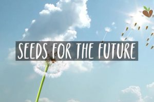 seeds-for-the-future-cv