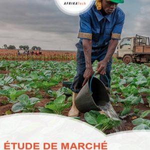 Etude de marché secteur Agrobusiness au Mali