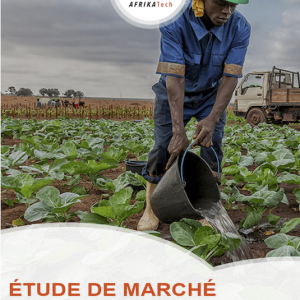 Etude de marché sur le secteur Agrobusiness en Côte d'Ivoire