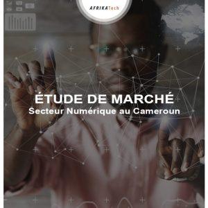 Etude de marché sur le secteur Numérique au Cameroun