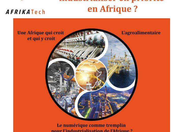 Quels secteurs d'activités industrialiser en priorité en Afrique ?