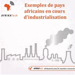 Exemples de pays africains en cours d'industrialisation