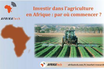 Investir dans l'agriculture en Afrique : par où commencer ?