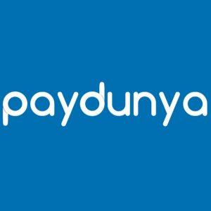 PayDunya Essai d analyse du succès de la fintech africaine